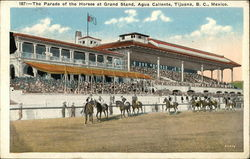 Agua Caliente - Parade of the Horses at Grand Stand