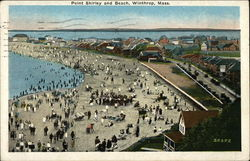Point Shirley and Beach Postcard