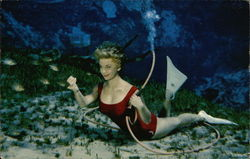 Mermaids, Weeki Wachee Spring