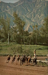 Santa Anita Park, 14 Miles from Downtown Los Angeles