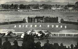 Arizona Downs
