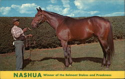 Nashua, Winner of the Belmont Stakes and Preakness