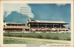 The Famous Tijuana Race Track