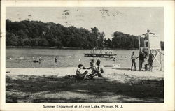 Summer Enjoyment at Alcyon Lake Postcard