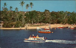Nukumarau and Cruise Boats