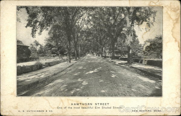Hawthorn Street, One of the Most Beautiful Elm Shaded Streets New Bedford Massachusetts