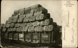 Cotton Transportation by Rail