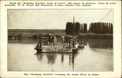 "The ""Walking Woolfs"" Crossing the Snake River"