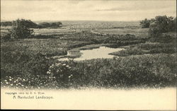 A Nantucket Landscape