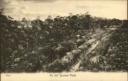 An Old 'Sconset Road