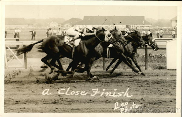 A Close Finish Leo Photo Horses