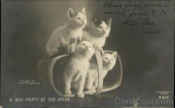 A Box Party at the Opera Cats
