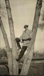 Photo of Man in Tree