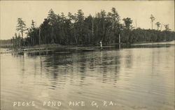 Pecks Pond
