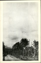 One of Many New Guinea Highways