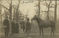 Showing Horse, King Stow