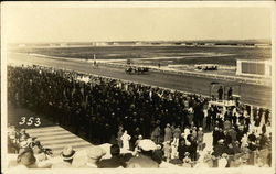 View of Horse Race