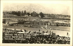 Around the Club House Turn, Santa Anita Race Track Postcard