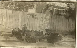 Woman feeding chickens