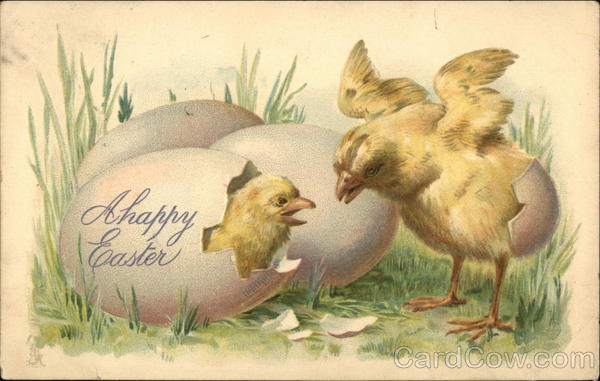 A Happy Easter - Two Chicks Hatching from Eggs With Chicks