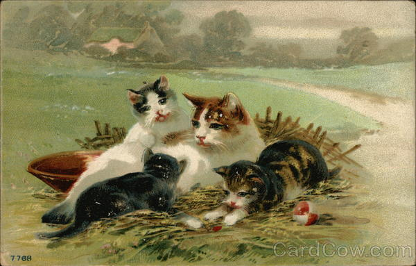 A Cat With Her Three Kittens In A Field Cats