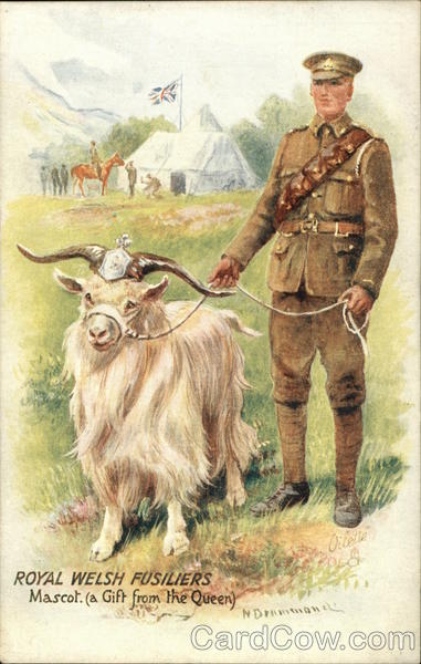 Royal Welsh Fusiliers, Mascot: a Gift from the Queen