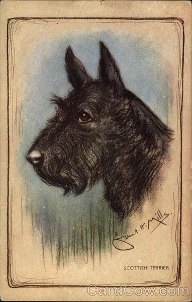 Pastel Drawing of Scottish Terrier Dogs