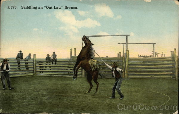 Saddling an Out Law Bronco Cowboy Western
