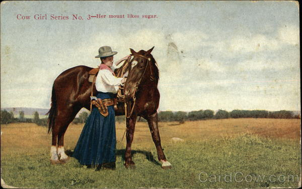 Cow Girl Series No. 3 - Her Mount Likes Sugar Cowboy Western