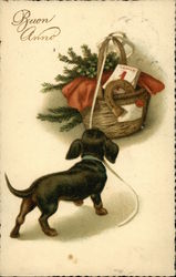 Dachshund Dog with Christmas Presents