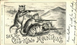 See the Cats-Kill Mountains