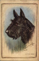 Pastel Drawing of Scottish Terrier