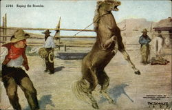Roping the Bronco - Three Cowboys in Corral with Horse