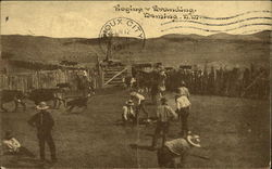 Roping and Branding, Deming, N.M