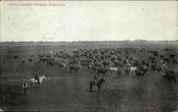 Cattle Ranching, Toppenish, Washington
