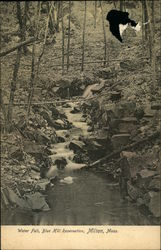 Water Fall, Blue Hill Reservation