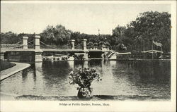 Water View of Bridge at Public Garden