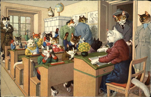 Cats Dressed as School Children