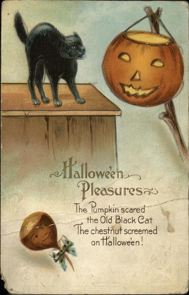 Haloween Pleasures - The Pumpkin scared the Old Black Cat