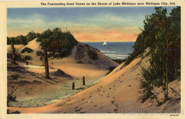 The Fascinating Sand Dunes on the Shores of Lake Michigan Indiana