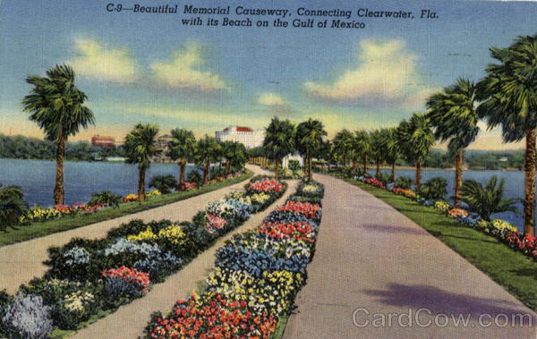 Beautiful Memorial Causeway Clearwater Florida
