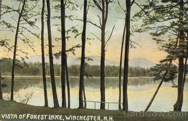 Vista Of Forest Lake Winchester New Hampshire