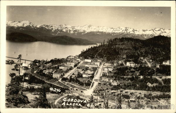 Bird's-Eye View of Cordova, Alaska
