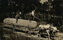 Horse-Drawn Wagon Pulling Giant Ear of Corn