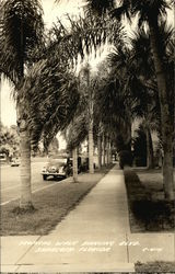 Tropical Walk Ringling Blvd