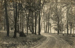 Road to Lake Cara, Rockefeller Postcard