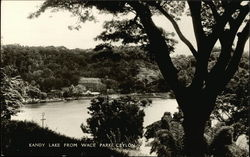 Kandy Lake from Wace Parks