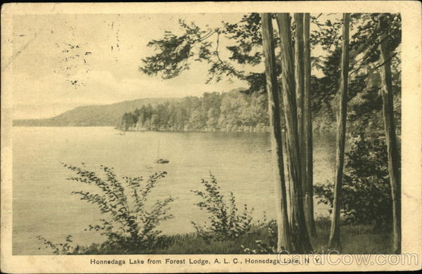 Honnedaga Lake from Forest Lodge, ALC New York