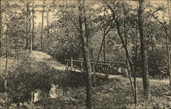 Rustic Foot Bridge Near the Lake