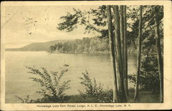 Honnedaga Lake from Forest Lodge, ALC